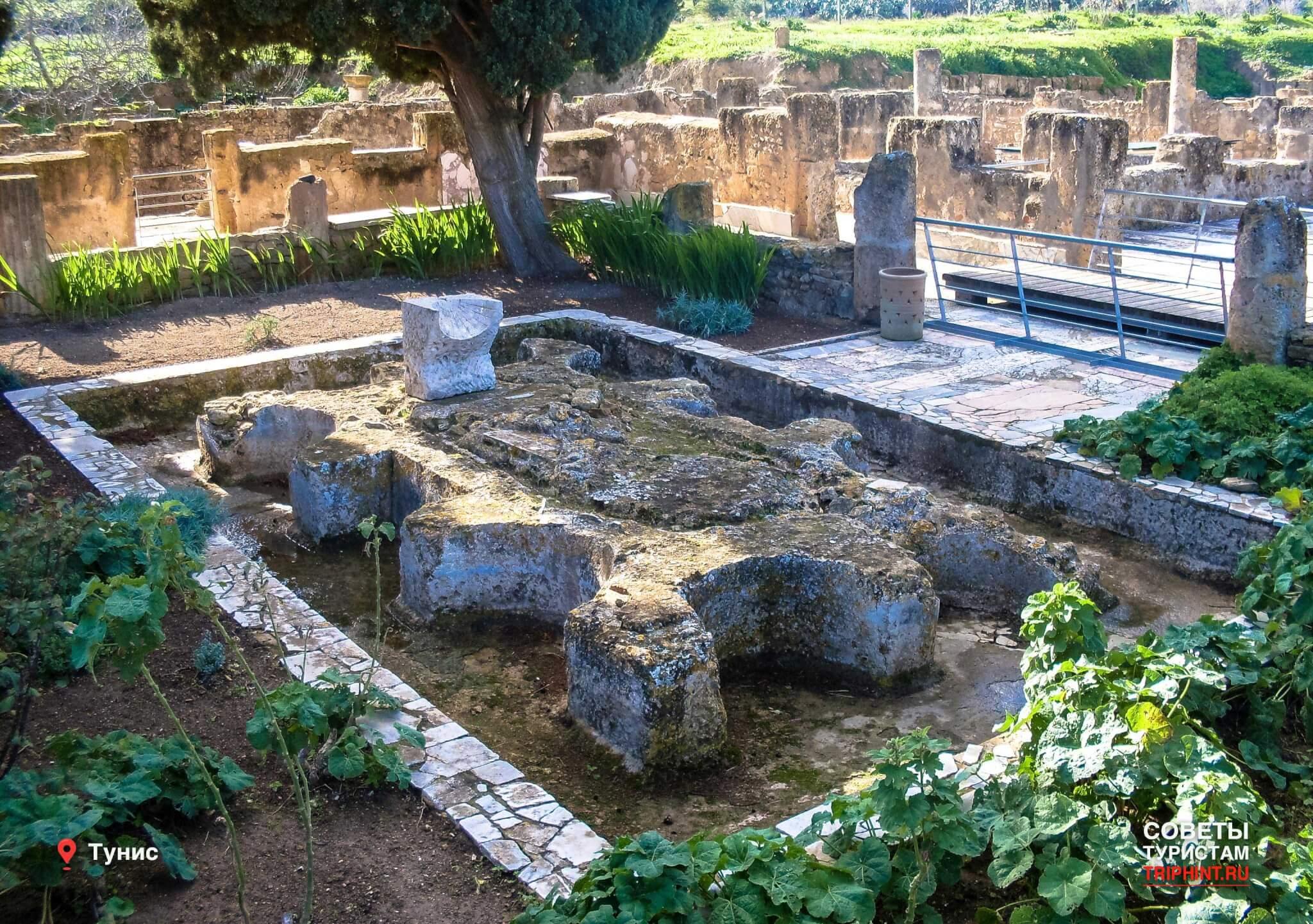 Какие достопримечательности Туниса посетить в октябре? Древний Фонтан